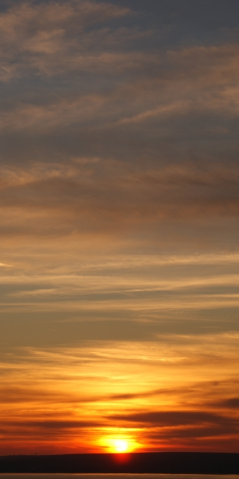 Susnet Kite Spot